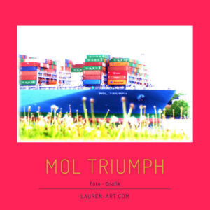 Containerschiff - MOL Triumph - Schiffsfoto - Foto Grafik - Pam Lauren Art.jpg